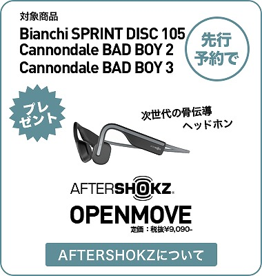 s-present-aftershokz