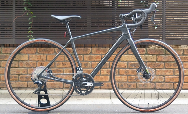 19synapse crb disc